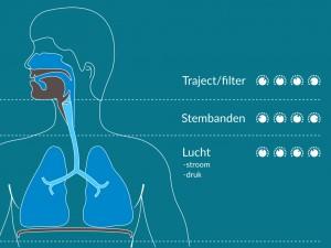 Anatomie die een stem vormt