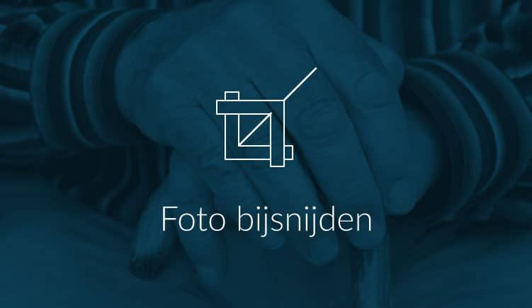 Foto bijsnijden in je presentatie